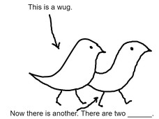 This is a wug. Now there is another. There are two ______.