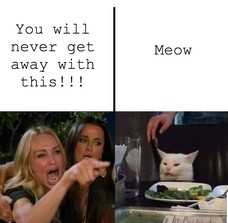 You will never get away with this!!! Meow