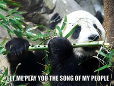 LET ME PLAY YOU THE SONG OF MY PEOPLE LET ME PLAY YOU THE SONG OF MY PEOPLE