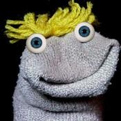 Oingobee's profile image