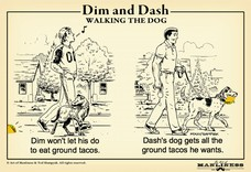 Dash's dog gets all the ground tacos he wants. Dim won't let his do to eat ground tacos.